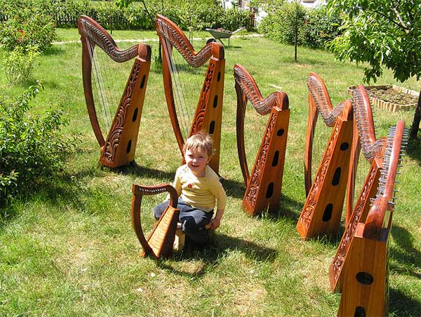 HarpHenge - a collection of harps in the field